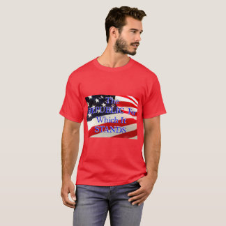 Men's Republic for which it Stands Flag T-Shirt