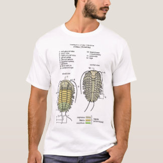 Men's Trilobite T-shirt