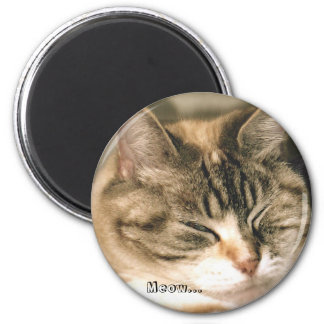 Meow... 2 Inch Round Magnet