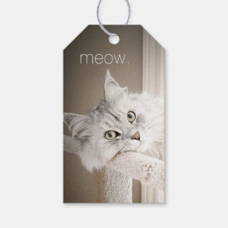 Meow Gift Tags Pack Of Gift Tags