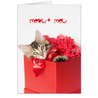 Meow + Mew Kitten Card