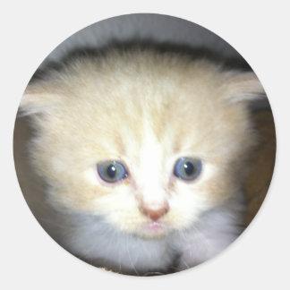 meow round sticker