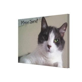 Meow there Gorgeous Cat Portrait Canvas Print