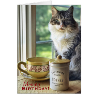 Meowvelous You Birthday Card