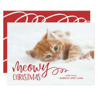 Meowy Christmas Cat Pet Holiday Photo Card