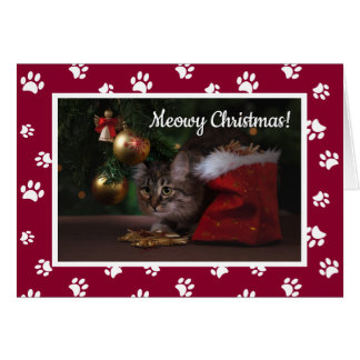 Meowy Christmas! Cute White Paw Prints Cat Photo Card