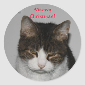 Meowy Christmas! -Holiday Greeting Stickers