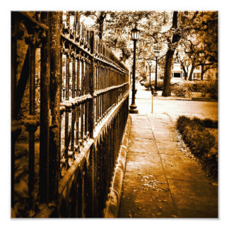 Mercer Fence Photo Print