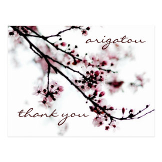 Merci de fleurs de cerisier carte postale