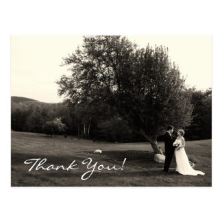 Merci de mariage cartes postales