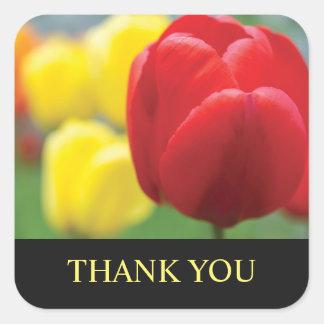 Merci rouge et jaune de tulipes sticker carré
