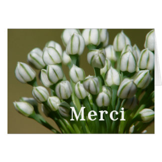 Merci - Thank you in French Card