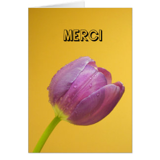 Merci _Thank you in French Card
