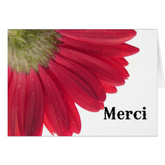 Merci, Thank you In French with Red daisy on cover Card