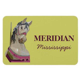 Meridian Magnet