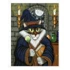 Merlin Magician Wizard Cat Magic Sorcerer Fantasy  Postcard