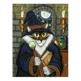 Merlin Magician Wizard Cat Magic Sorcerer Fantasy  Postcard
