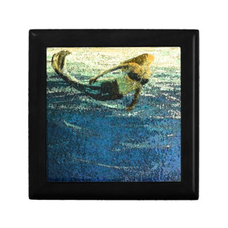 Mermaid Greeting the Dawn Jewelry Boxes