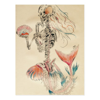 Mermaid.jpg Postcard
