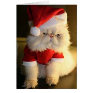 Merry CatMas Greeting Cards