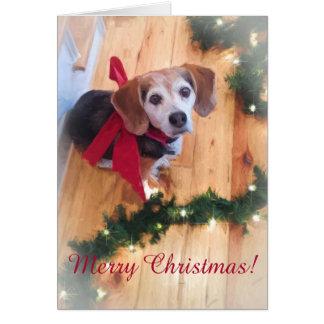 Merry Christmas Beagle Customizable Blank Card