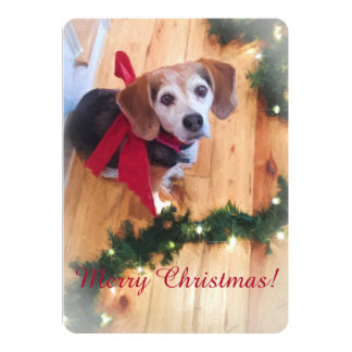 Merry Christmas Beagle Flat Card