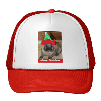 Merry Christmas Bunny With Holiday Rabbit Hat Gift