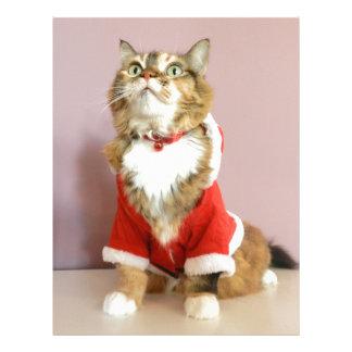 Merry Christmas cat santa puss Custom Letterhead