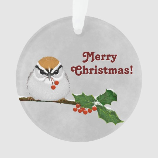 """* """"Merry Christmas"""" Chipping Sparrow with Year Ornament"""