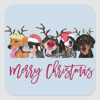 Merry Christmas Coonhound Head  square sticker