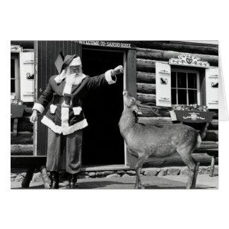 Merry Christmas Deer! Card