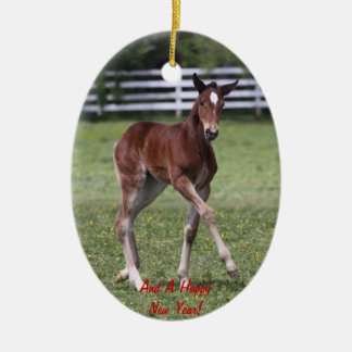 Merry Christmas Foal Ornament