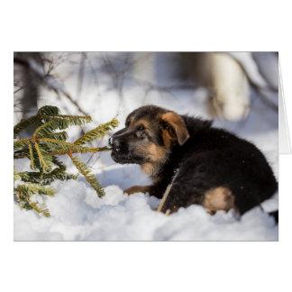 Merry Christmas German Shepherd card