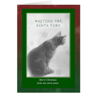Merry Christmas Greeting - Watchful Kitty - Santa Card