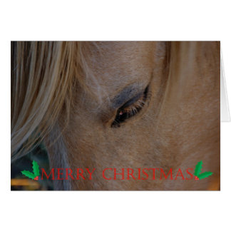Merry Christmas Happy Holidays Christmas horse Card