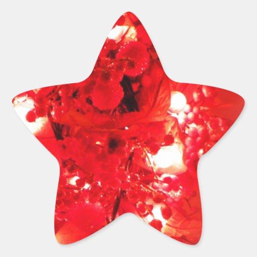 Merry Christmas  Holiday celebrations Santa Clause Star Sticker