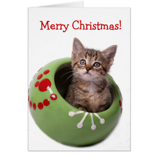 Merry Christmas Kitten Card