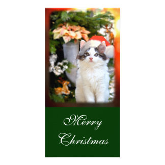Merry Christmas Kitten Photo Card