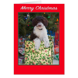 Merry Christmas Labradoodle Puppy Card