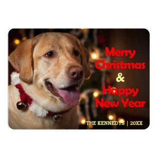 "Merry Christmas - Labrador Retriever Bell Collar 5"" X 7"" Invitation Card"