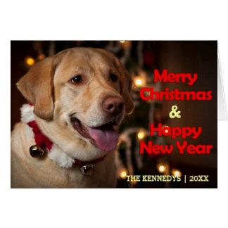 Merry Christmas - Labrador Retriever Bell Collar Greeting Card
