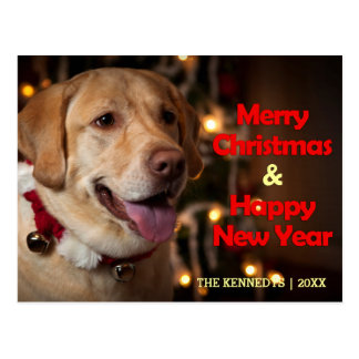 Merry Christmas - Labrador Retriever Bell Collar Postcard