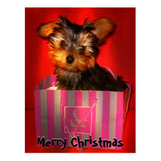 Merry Christmas Little Yorkie Customizable Postcard