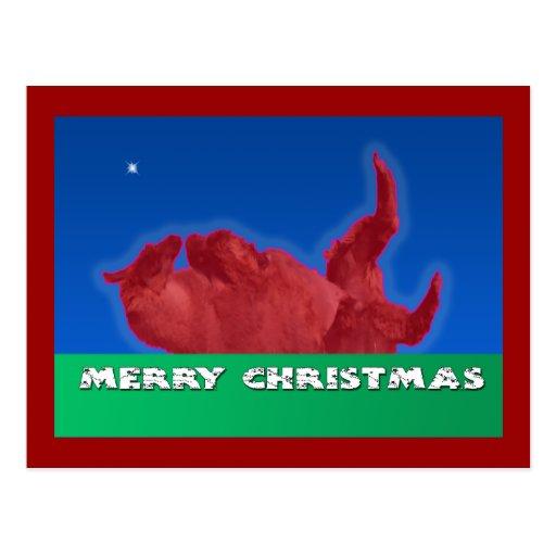 Merry Christmas Llama Rolls in Dirt Bath Post Card