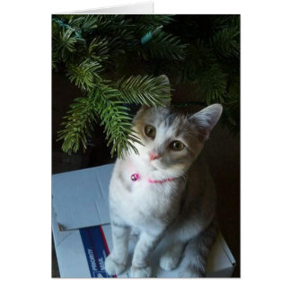 Merry Christmas Muffin (Card) Card