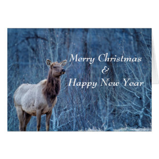 Merry Christmas Nature Card