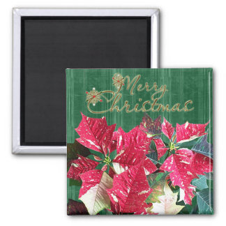 Merry Christmas Poinsettia Magnet