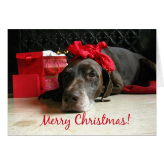 merry christmas  pointer and gifts at fireplace card