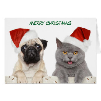 Merry Christmas Pug dog and Kittten Card