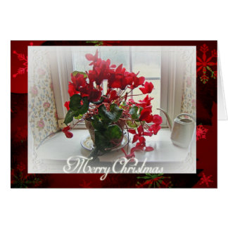Merry Christmas Red Cyclamen Greeting Card
